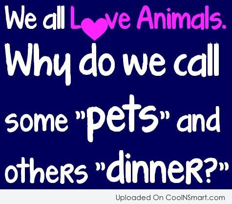 Pets Quote: We all love animals. Why do we...