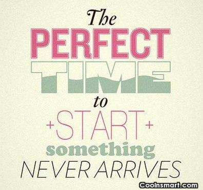 Perfection Quote: The perfect time to start something never...