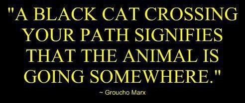 Superstition Quote: A black cat crossing your path signifies...