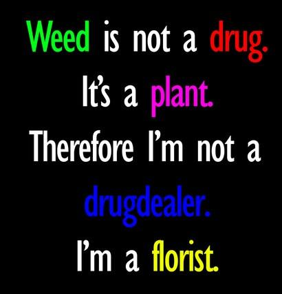 Drugs Quote: Weed is not a drug. It's a...