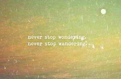 Travel Quote: Never stop wondering. Never stop wandering.