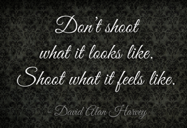 Photography Quote: Don't shoot what it looks like. Shoot...