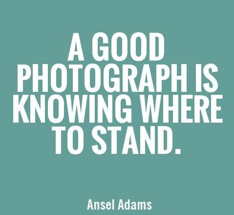 Quote: A good photograph is knowing where to...