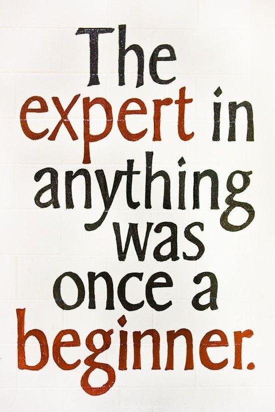 Inspirational Quote: The expert in anything was once a...