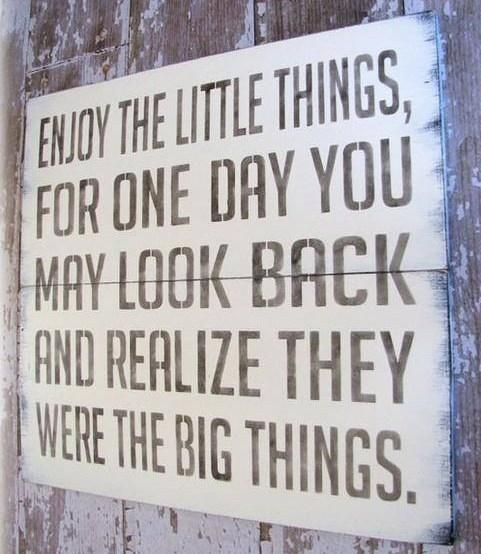 Life Quote: Enjoy the little things, for one day...