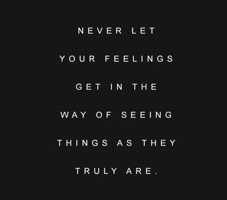 Never let your feelings get in the...