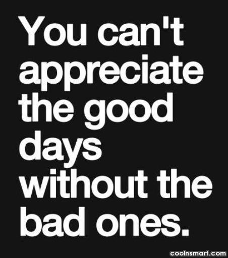 Positive Quote: You can't appreciate the good days without...