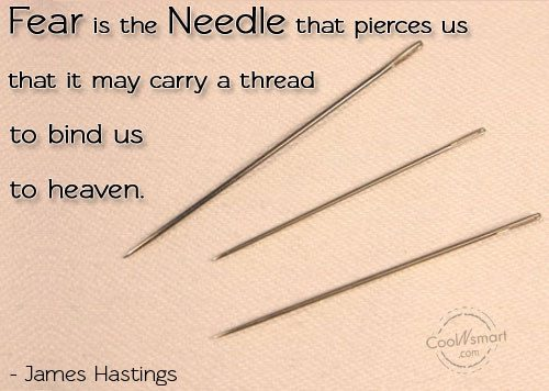 Fear Quote: Fear is the needle that pierces us...
