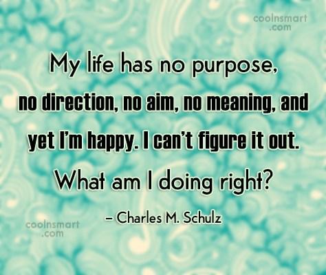 Quote: My life has no purpose, no direction,...