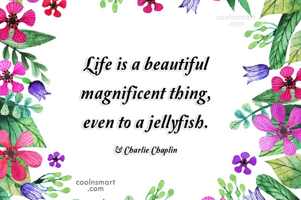 Quote: Life is a beautiful magnificent thing, even...