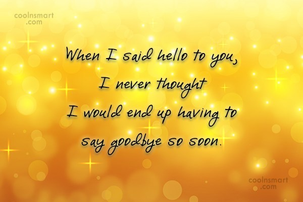 Goodbye Quote: When I said hello to you, I...
