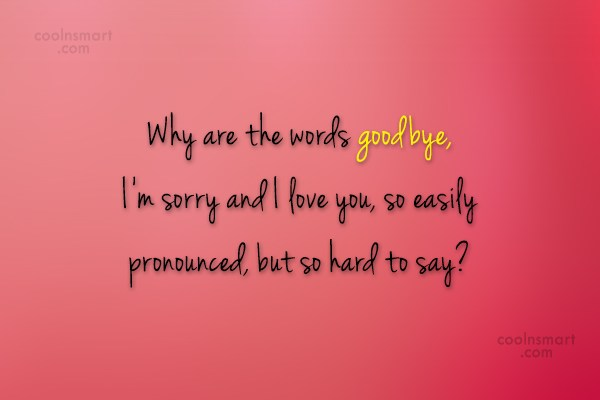 Goodbye Quote: Why are the words goodbye, I'm sorry...