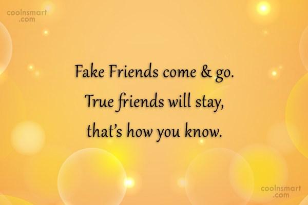Quote: Fake Friends come & go. True friends...
