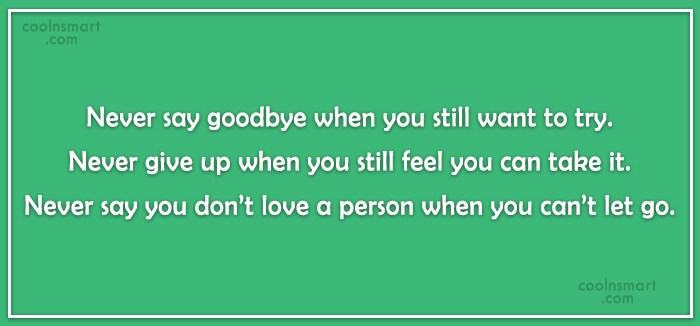 Goodbye Quote: Never say goodbye when you still want...