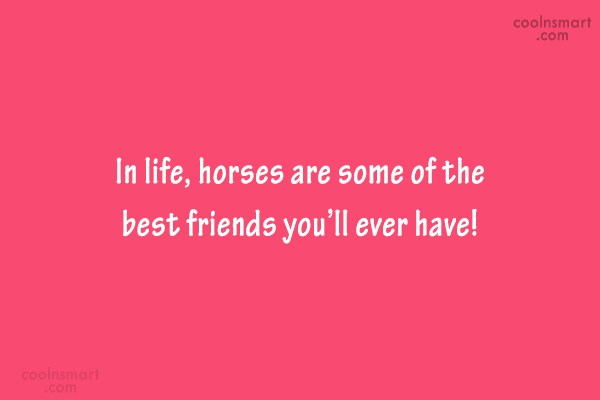 Horse Quote: In life, horses are some of the...