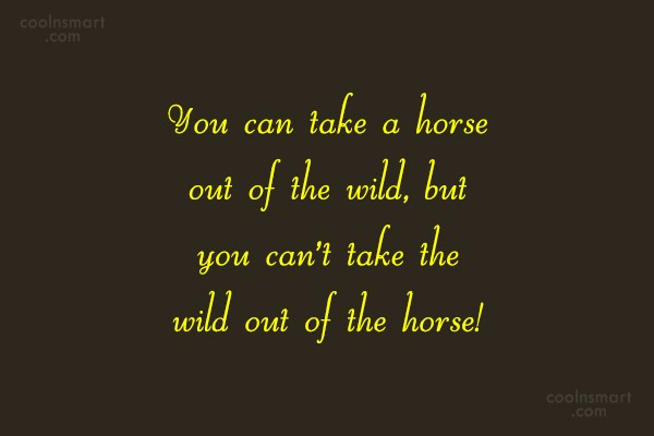 Horse Quote: You can take a horse out of...