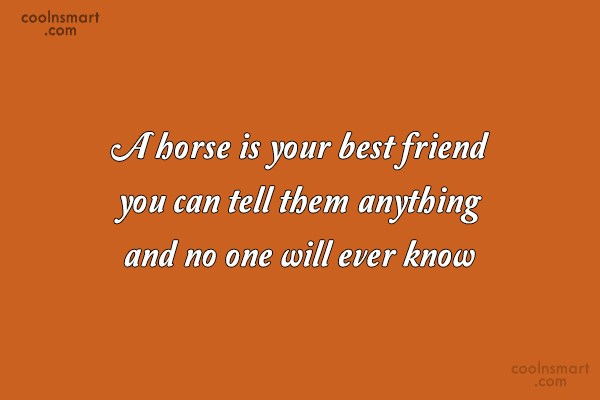 Horse Quote: A horse is your best friend you...