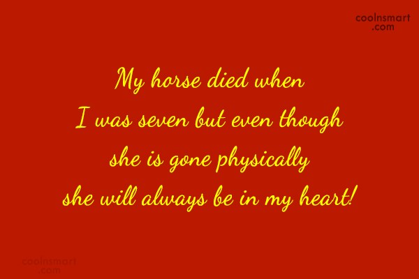 Horse Quote: My horse died when I was seven...