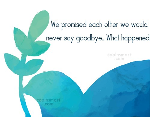 Goodbye Quote: We promised each other we would never...