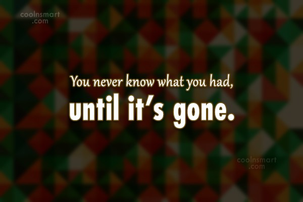 Goodbye Quote: You never know what you had, until...