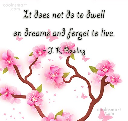 Quote: It does not do to dwell on...