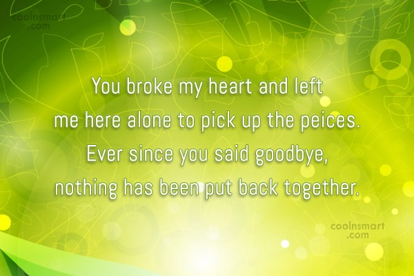 Goodbye Quote: You broke my heart and left me...