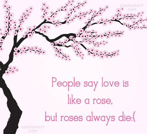Quote: People say love is like a rose,...
