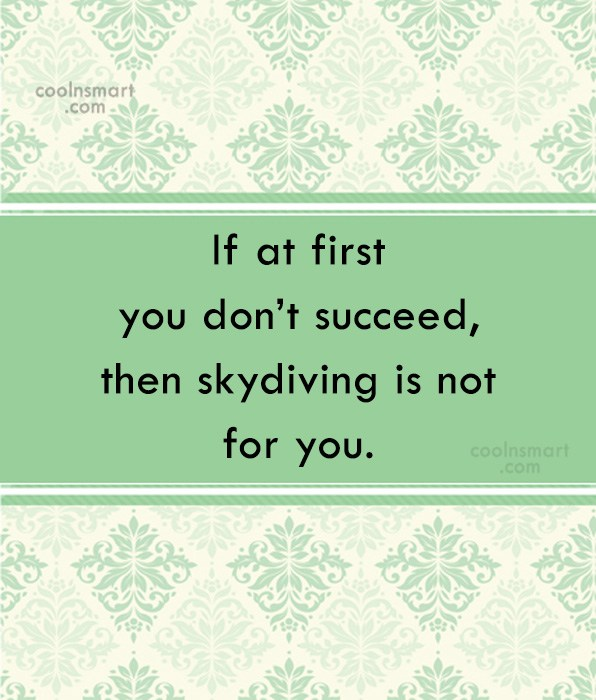 Clever Quote: If at first you don't succeed, then...