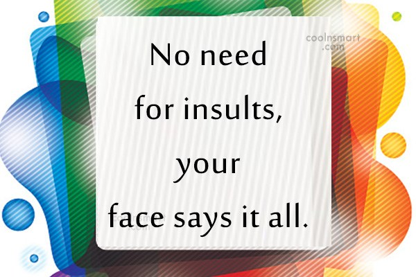 Insult Quote: No need for insults, your face says...
