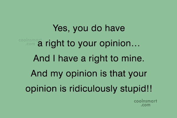 Insult Quote: Yes, you do have a right to...