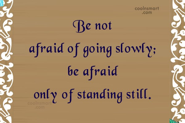 Progress Quote: Be not afraid of going slowly; be...