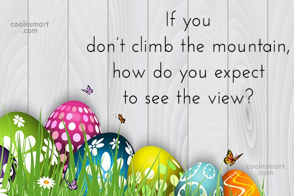 Quote: If you don't climb the mountain, how...