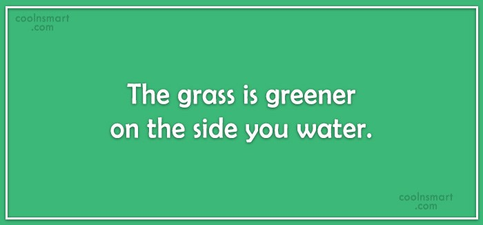 Quote: The grass is greener on the side...