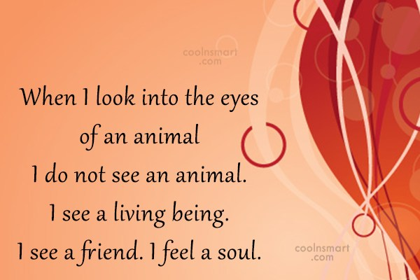 Images Quote: When I look into the eyes of...