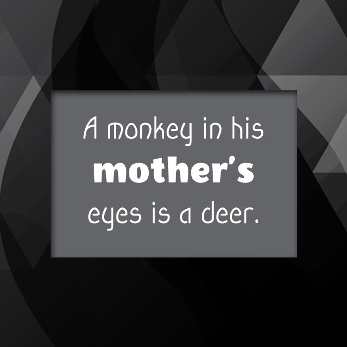 Quote: A monkey in his mother's eyes is...