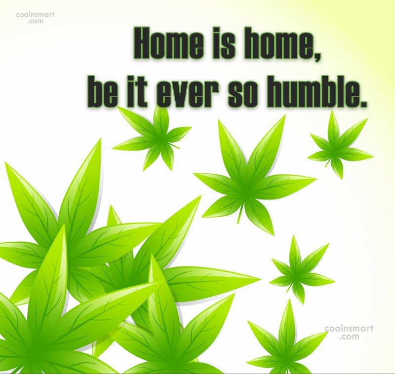 Home Quote: Home is home, be it ever so...
