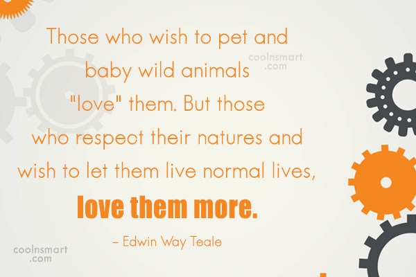 Nature Quote: Those who wish to pet and baby...