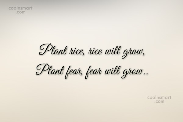 Quote: Plant rice, rice will grow, Plant fear,...