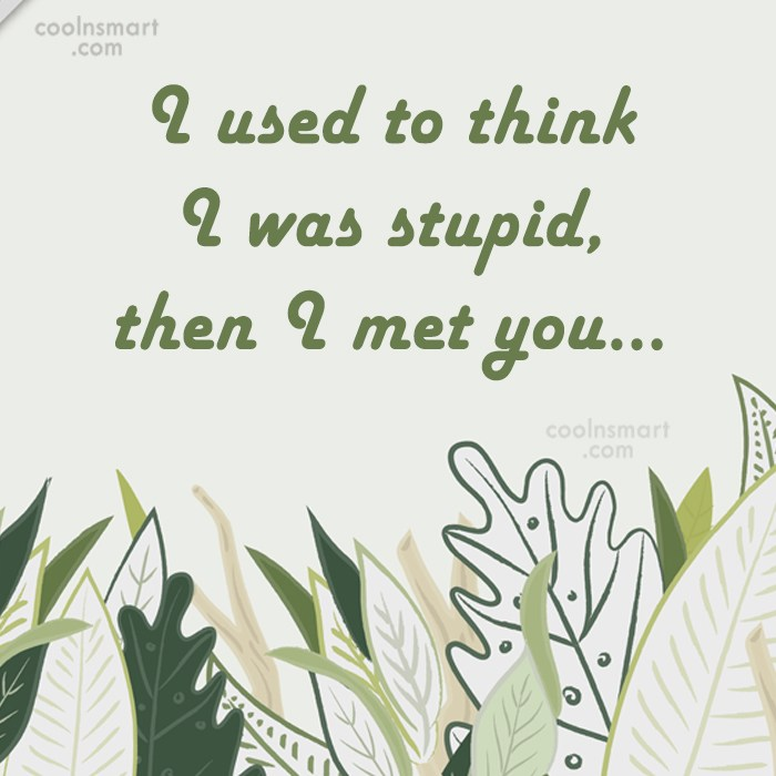 Stupid Quote: I used to think I was stupid,...