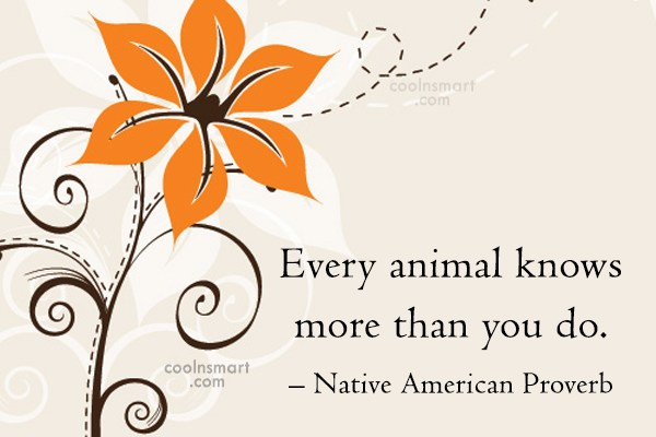 Images Quote: Every animal knows more than you do....