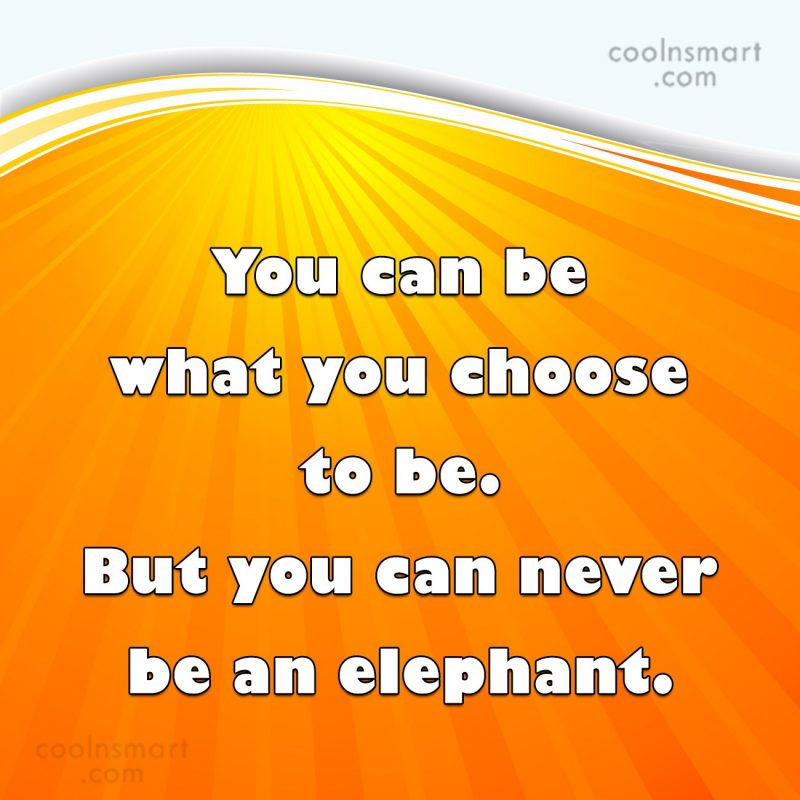 Stupid Quote: You can be what you choose to...