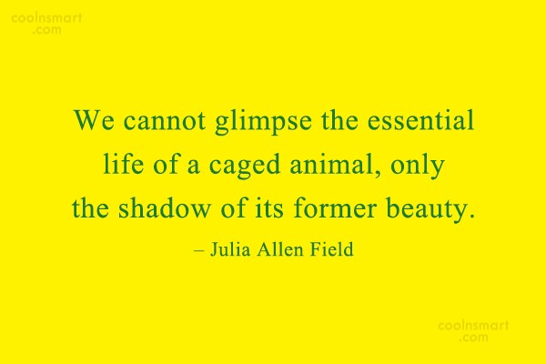 Images Quote: We cannot glimpse the essential life of...