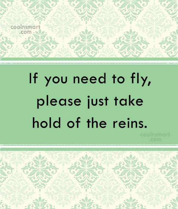 Horse Quote: If you need to fly, please just...