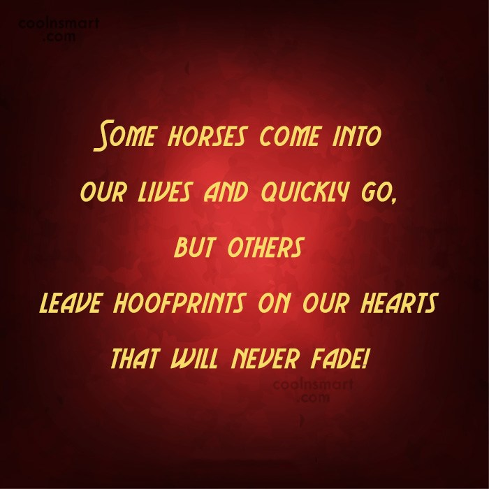 Horse Quote: Some horses come into our lives and...