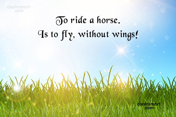 Horse Quotes and Sayings - Images, Pictures - Page 7 ...