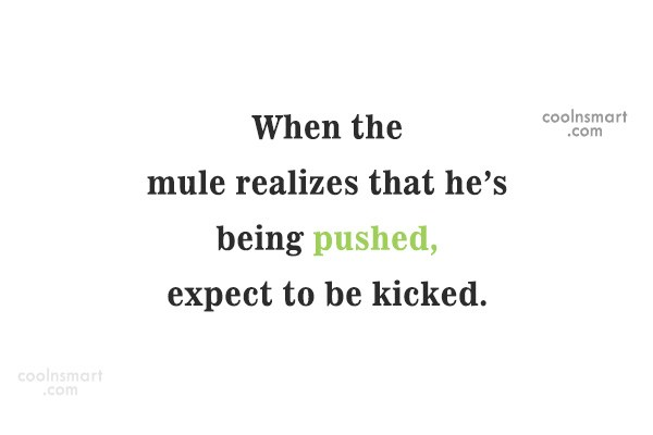 Quote: When the mule realizes that he's being...