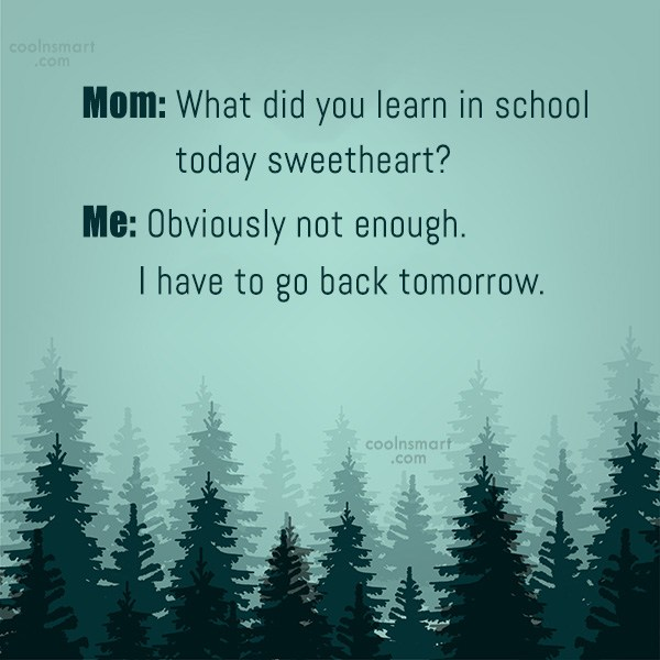 Sarcastic Quote: Mom: What did you learn in school...