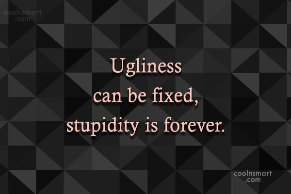 Sarcastic Quote: Ugliness can be fixed, stupidity is forever.