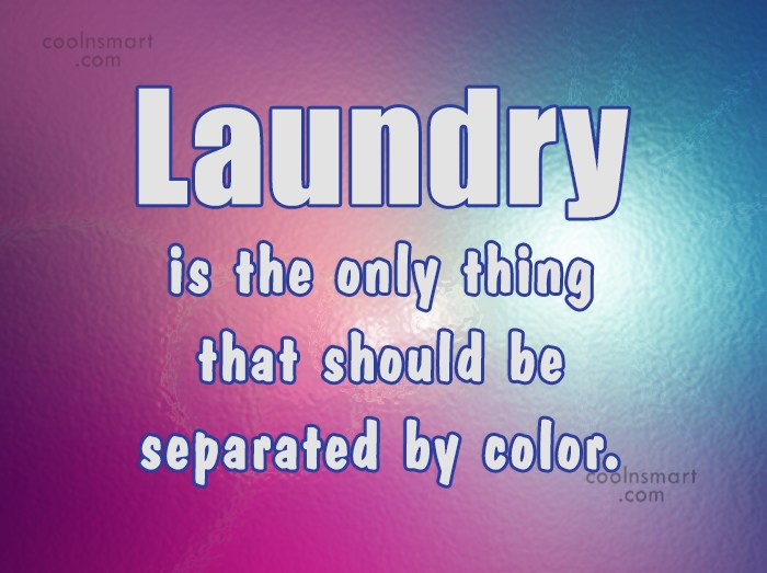 Racism Quote: Laundry is the only thing that should...