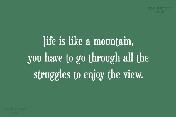 Enjoying Life Quote Life Is Like A Mountain You Have